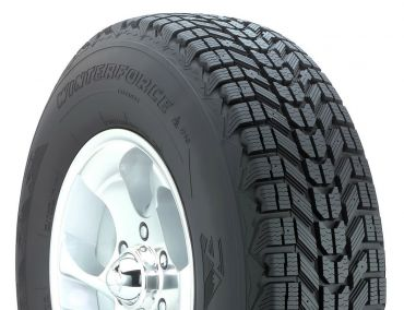 WinterForce 215/60 R16 95S (шип)